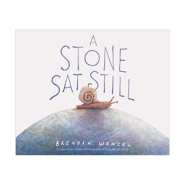 A Stone Sat Still (Hardcover)